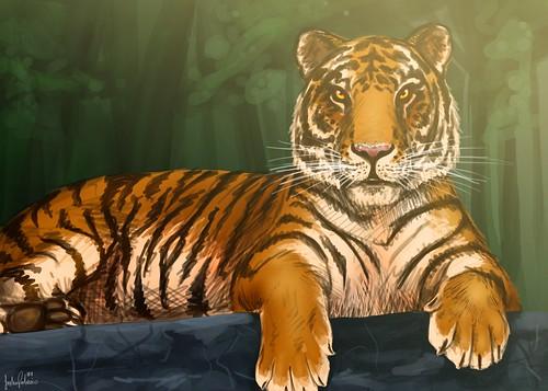 Tribute to Tigress