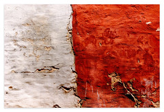 Texture de Areco (♫ marc_l'esperance) Tags: red white texture argentina wall canon eos peeling paint raw decay cement surface plaster 10d worn weathered rough nocrop uncropped cracked divided allrightsreserved textured 2007 uneven cml sanantoniodeareco canonef70200mmf28lusm