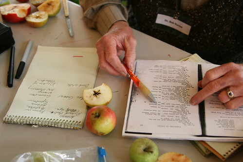 Dr. Bob Nortons Apple Identification - Fascinating Work!