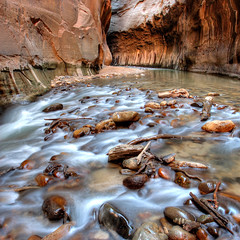 Zion Narrows Riverbed (Rob Kroenert) Tags: park usa river landscape utah rocks virgin national riverbed zion zionnationalpark narrows virginriver