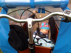 Car Seat In Bakfiets MADSEN With Custom Insert Adapted Bike Trailer