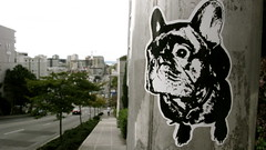 Tag (deejayres) Tags: seattle urban streetart decal