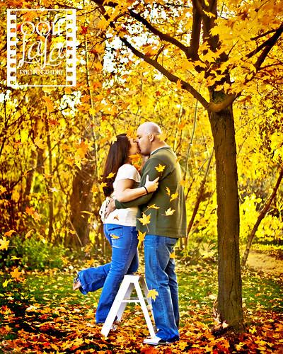Ladder to Love