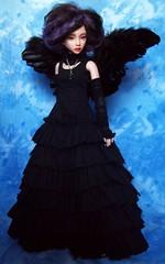 Lady Raven 14 (ranmanekineko) Tags: black wings doll feathers bjd dollfie raven fashiondoll msd asiandoll narin narae narindoll asianballjointdoll nerilka japanesefashiondoll dollheartfer