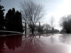 off the car (Maʝicdölphin) Tags: reflection tree fall canon powershot a590