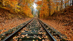 Autumn In Croom, MD (Baab1) Tags: supershot abigfave platinumphoto amazingamateur goldstaraward aplusphoto oltusfotos autumnleaves fall fallcolors leaves trees mywinners croommaryland princegeorgescountymaryland autmn autumncolors fallleaves nikon d3001755nikkor railrooads railroadtracks diminishingperspectives