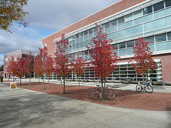 Science Center with autumn trees and bikes