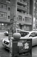 Urban pumpkin (Peter_Cameron) Tags: hp5 bessar id1111 cv3517