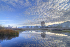 to find the end... (gregor H) Tags: winter nature clouds landscape pond frost mood patterns bluewater liechtenstein moor cloudysky calmwater coldmorning ruggell bratanesque ruggellerriet