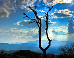 Fragmentary Blues of Medjugorje (Photo Passion) Tags: blue mountains tree clouds secrets visionary ourlady medjugorje naturesfinest queenofpeace crossmountain betweenthehills herzegovinabosnia miraclesofmedjugorje