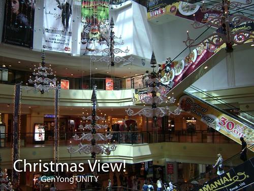 Christmas View