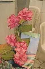 9 (dalvaflores.com) Tags: de casa em minha curso flres dou