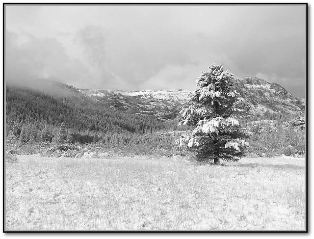 صور فصل الشتاء صور لفصل