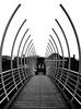 Ribs II (HannyB) Tags: bridge bw leiden blackwhite interestingness 100v10f symmetry ribs 30faves30comments300views