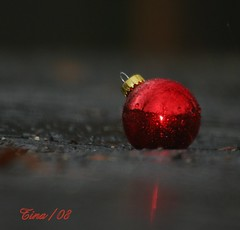 Driveway Ornament (Tina  **~) Tags: christmas red mist macro art rain by digital canon fun december photographer awesome driveway ornament missouri tina garrison anawsomeshot natureselegantshots womenphotograher missouriphotograher