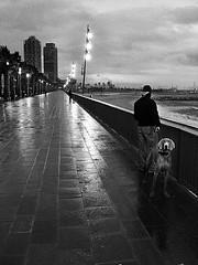Barcelone, 2004 (François Garnotel) Tags: street bw chien noiretblanc nb dedos rue espagne nuit barcelone sauvette thelanguageofphotography