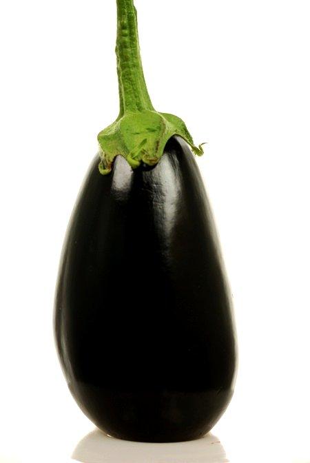eggplant© by Haalo