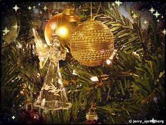singing angel (jerry_springberg) Tags: christmas xmas natal angel weihnachten navidad ange noel animation angelo engel jul natale クリスマス nadal kerstmis jól karácsony nadolig joulu 聖誕節 圣诞节 рождество gwiazdka kristnasko коледа sarcalogos xριστούγεννα jerryspringberg chrëschtdag рождествохристово krismasi kersfeesgif jerryschristmas