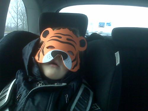 Sleeping Tiger!!