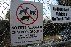 no dogs, cats or pot bellied pigs