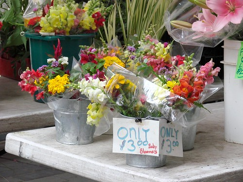 Fresh Cut Flowers at the Rock Center Greenmarket