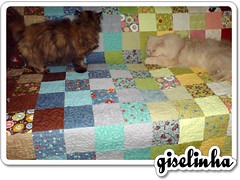 eles aprovaram! (giselinha_) Tags: quilt squares charm patchwork panache odissea freemotionquilting