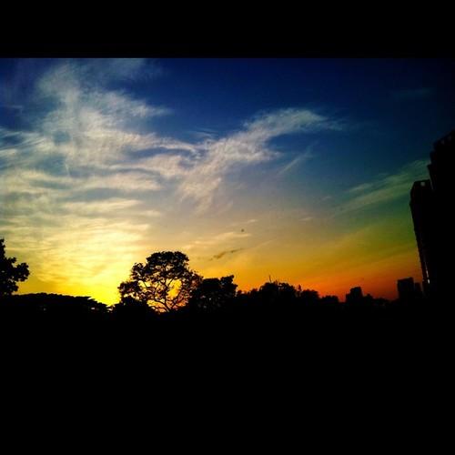 Wakening sun... by tamaow