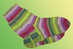 tara_socks