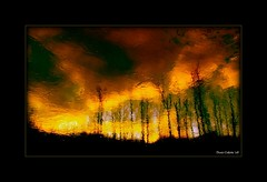 Feu de fort...!!! (Denis Collette...!!!) Tags: trees wild canada reflection tree forest reflections river fire photo bravo quebec photos rivire safari reflet arbres qubec rivers walden forestfire impressions collette fires arbre reflets forests photosafari impression impressionist denis fort feu sauvages feux thoreau sauvage impressionists rivires portneuf wildrivers wildriver impressionistes impressionniste feudefort forts worldbest deniscollette pontrouge riviresauvage world100f paololivornosfriends riviressauvages photossafari cffaa interetingphotos themonalisasmile