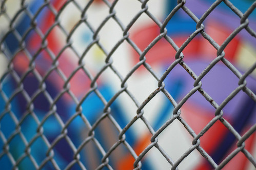 fence and colors