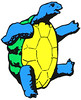 Grateful Dead terrapin
