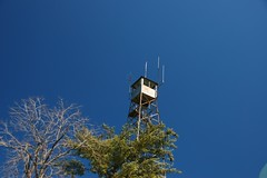Westminster/Oakvale Tower