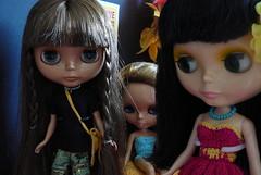 Sky, Ginger and Lula