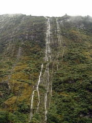 Doubtful Sound (Wisemancat) Tags: travel newzealand christchurch nature southisland milfordsound doubtfulsound mountcook phography