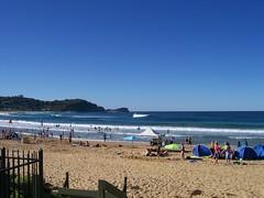 Avoca Beach Swell