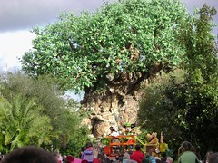 El rbol de la Vida/The Tree of Life, Animal Kingdom, Walt Disney World 2009 - www.meEncantaViajar.com (javierdoren) Tags: voyage trip travel viaje vacation usa holiday color america us orlando amrica holidays unitedstates florida unitedstatesofamerica disney mickey disneyworld mickeymouse viagem northamerica characters voyager pluto minnie minniemouse wdw waltdisneyworld amerika viagens viaggi viaggio animalkingdom viatges vacanze treeoflife reise viajar waltdisney estadosunidos personajes eeuu centralflorida discoveryisland disneycharacters amrique viajante estadosunidosdeamrica tatsunis thetreeoflife viaggiando viaggiare waltdisneyworldresort vacacin rboldelavida amricadelnorte ratnmickey meencantaviajar ilovetravelling ammerica mipiaceviaggiare jaimevoyager voyagercestlepied elrboldelavida waltdisneyworld2009 animalkingdom2009 lestatsunis