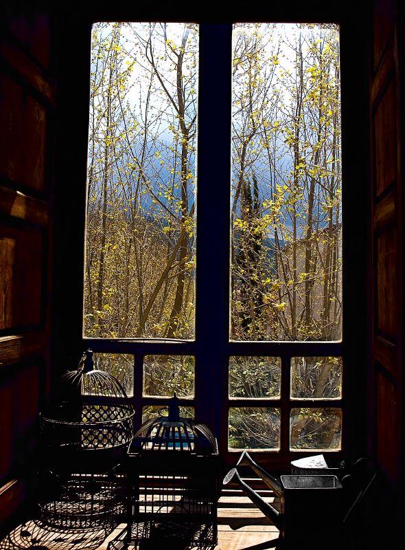 Quiet afternoon