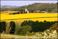 Kentish Country Scene (Andy's & Becky's Bits) Tags: trees church nature yellow rural kent blossom country scenic fields oasthouse digitalcameraclub