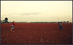 Los abrazos que surgen en el viento (Alfilmorado) Tags: paisaje campo chicas felicidad reencuentro correr abrazar encontrarse lachicadelaspinturas