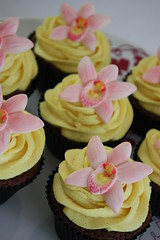 Orchid Wedding Cupcakes (ConsumedbyCake) Tags: pink wedding orchid flower cakes cookies yellow cupcakes worthing chocolate sugar cupcake handpainted mudcake vanilla fondant buttercream molded fantasticflowers consumedbycake
