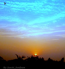 A Scenic Sunset as seen from our   Balcony in the West. (Sunciti _ Sundaram's Images + Messages) Tags: sunrise searchthebest creativecommons estrellas 1001nights soe visualart bestshot brightspark blueribbonwinner otw kaledioscope 10faves 5photosaday distellery abigfave enstantane platinumphoto anawesomeshot colorphotoaward impressedbeauty aplusphoto skycloudssun agradephoto flickraward diamonclassphotographer inspirationhappiness eperke brillianteyejewel concordians colourartaward awesomescenery brilliantphotography overtheshot abovealltherest brutalshots mallimixstaraward artofimages saariysqualitypictures artofatmosphere winklerians 1001nightsrainbowmagicabigfave