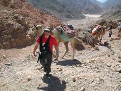 200901-15 Kamelentocht, Henk beklimt een pasje (Lijnie & Henk) Tags: dahab sinai henk kamelentocht