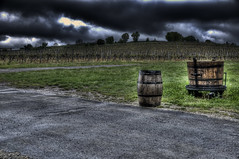 Vineyard Hills HDR