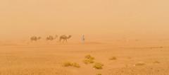 tempte de sable (c.ledur) Tags: montagne desert sable ciel maroc paysage tempte cledur