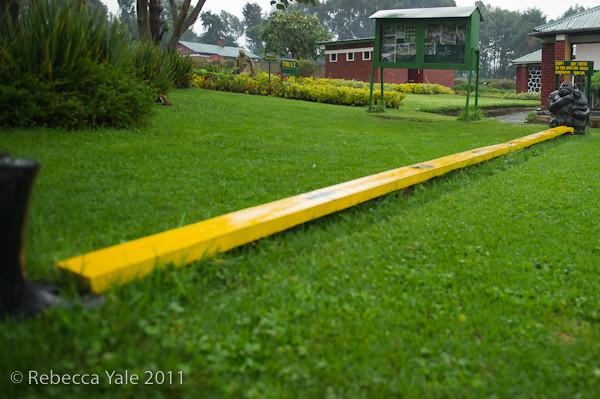 RYALE_Rwanda_Uganda_Safari-5