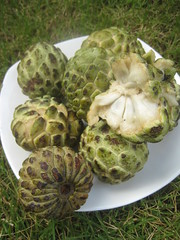 Balinese Fruit, Indonesia