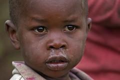 Children (afromemy) Tags: africa park travel portrait bw white face animal eyes wildlife natura safari occhi sguardo afrika uganda ritratto viaggio animali viso bambino virunga bkackwhite chilgre bianeto