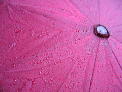 Pretty Pink Close-Up (sooc) (ilonqua) Tags: abstract macro droplets explore ap raindrops ppt unprocessed wetwetwet pinkumbrella sooc theunforgettablepictures tup2 prettypinktuesday ilonqua imamflickr