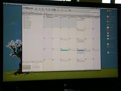 Calendar - HP DreamColor