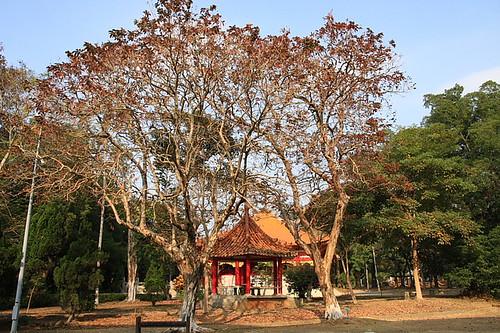 嘉義公園孔廟15